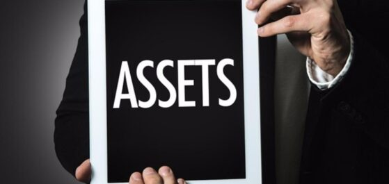 Personal Vs. Business Asset Protection: Which is Better?