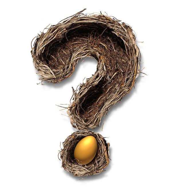 Retirement-Nest-Egg-Questions