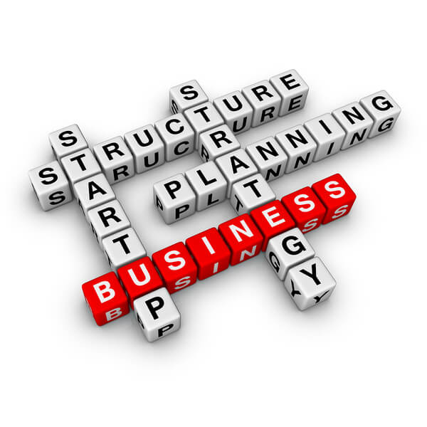 Choosing Your Business Structure: S vs C Corporations